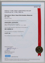 KEMA certificate for 24kV 630A Rear connector per IEC 60502